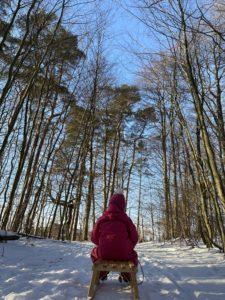 Kind auf Schlitten im Wald
