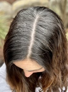Kopf von oben, braune mit grauen Haaren
