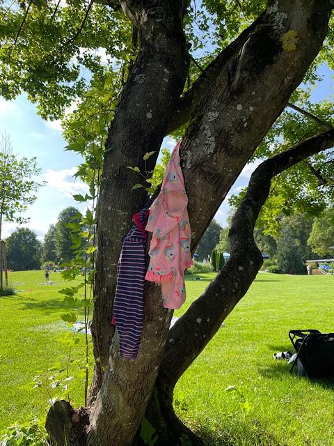 Badeanzüge im Baum