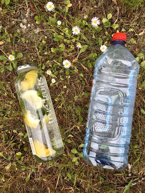 Glasflasche und Plastikflasche