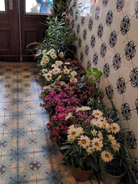 Blumen in Hausflur