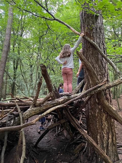 Kinder auf Baumstämmen